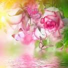 鲜花中蝴蝶图片(8张)