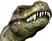 恐龙模型图片(8张)