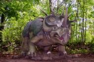 恐龙模型和恐龙化石图片(12张)