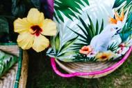 充满热带风格的图片(12张)