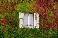外形各异的窗户图片(10张)