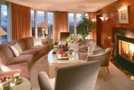 文华东方酒店之瑞士日内瓦店图片(15张)