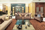 广州颐和高尔夫庄园B区C型别墅样板房图片(42张)