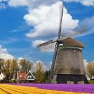 唯美的风车图片(6张)