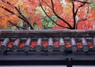 日式庭院和枫叶图片(23张)