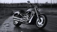 Chopper重型摩托图片(7张)