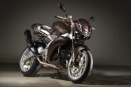 Vilner改装Aprilia(阿普利亚)Stingray摩托车图片(19张)