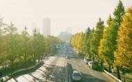 唯美城市街道公路图片(6张)