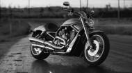 哈雷戴维森摩托车图片(8张)