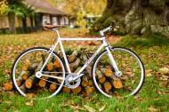 怀旧风格的自行车图片(12张)