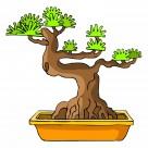 卡通盆栽图片(31张)