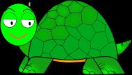 卡通龟图片(11张)