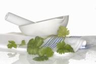 香草和餐具图片(19张)