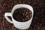 杯中的咖啡豆图片(15张)