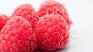 营养好吃的红色树莓图片(14张)