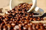 咖啡原料咖啡豆图片(10张)