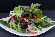 营养的蔬菜沙拉图片(15张)