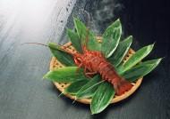 美味龙虾图片(5张)