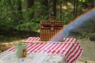 户外野餐烧烤图片(10张)