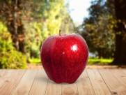 诱人的红苹果图片(18张)
