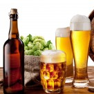 爽口的啤酒图片(17张)