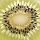 水果背景图片(31张)