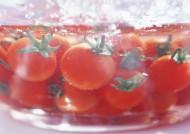 新鲜西红柿图片(25张)