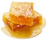 黄色的蜂巢图片(12张)