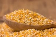玉米粒图片(8张)