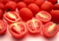 西红柿图片(26张)