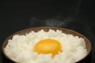香甜软儒的米饭图片(20张)