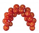 番茄图片(22张)