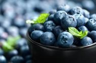 美味的蓝莓图片(7张)