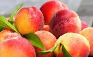 鲜美的桃子图片(14张)