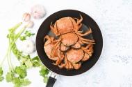 肥美的大闸蟹图片(8张)