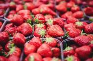 新鲜的草莓图片(12张)