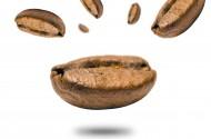 咖啡豆高清图片(18张)