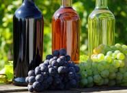 葡萄与葡萄酒图片(10张)
