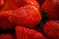 美味可口的红色草莓图片(12张)