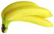 新鲜的香蕉图片(17张)