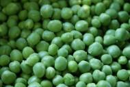 圆圆的豌豆图片(14张)