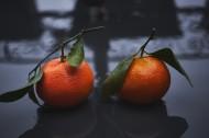 好吃的柑橘图片(10张)