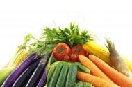 各种各样的蔬菜图片(16张)
