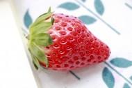 酸甜好吃的草莓图片(8张)