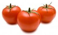 番茄特写图片(11张)