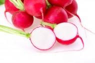 甜脆的樱桃萝卜图片(17张)