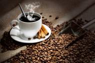 咖啡与咖啡杯的图片(13张)