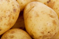 马铃薯土豆图片(7张)