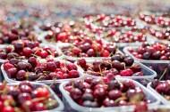美味的樱桃图片(13张)