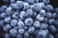 精选蓝莓图片(12张)